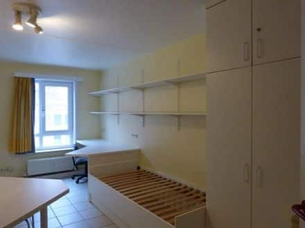 Student flat for rent
