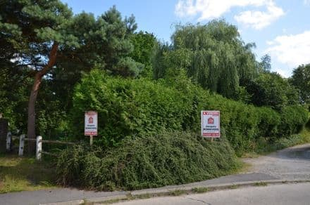 Building land<span>1855</span>m² for rent