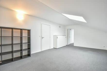 Office or business<span>23</span>m² for rent