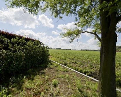 Land for rent Damme