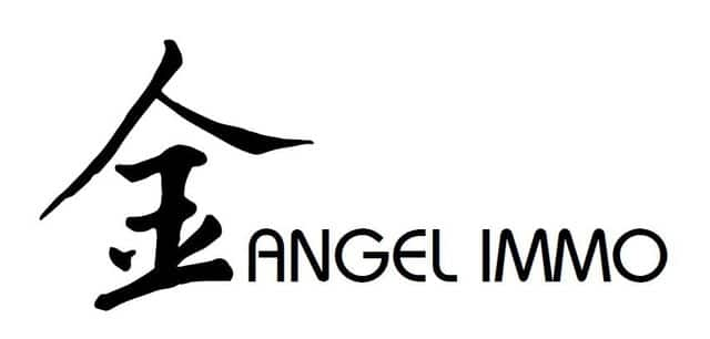 Angel Immo, agence immobiliere Mont-Sur-Marchienne