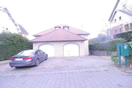 Villa<span>300</span>m² for rent