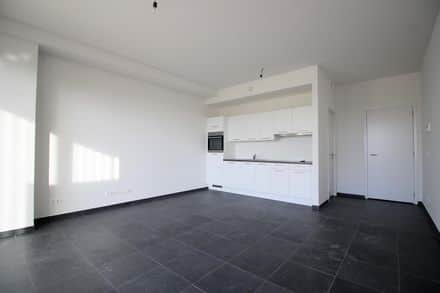Studio<span>40</span>m² for rent