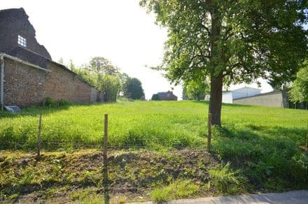 Land for rent Borgloon