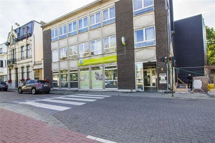 Office or business<span>229</span>m² for rent