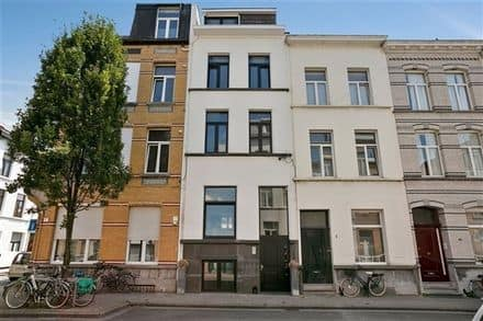 Special property<span>350</span>m² for rent