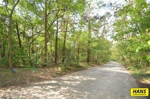 Land for sale in Lillo