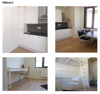 Special property for rent