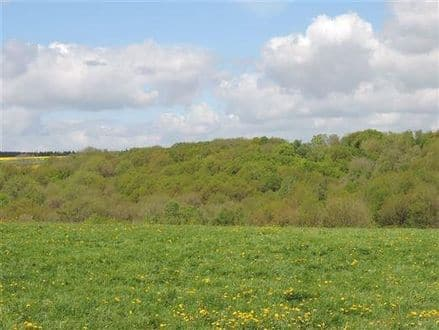 Land<span>68278</span>m² for rent Hastiere