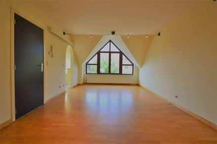 Penthouse<span>55</span>m² for rent