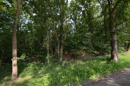 Building land<span>1311</span>m² for rent