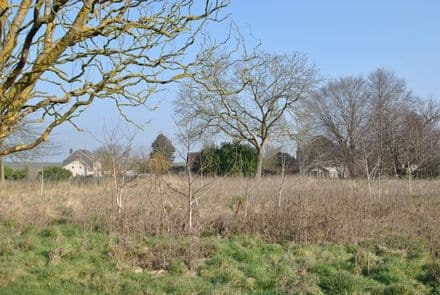 Building land<span>1778</span>m² for rent