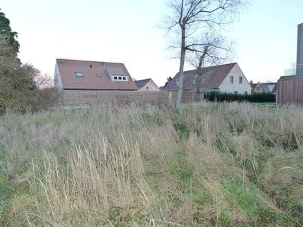 Building land<span>775</span>m² for rent