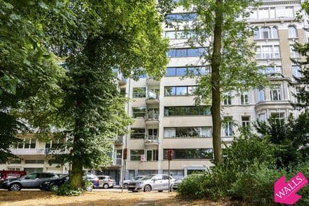 Apartment<span>280</span>m² for rent