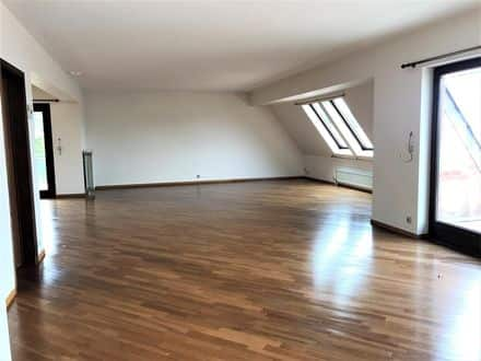 Penthouse<span>250</span>m² for rent