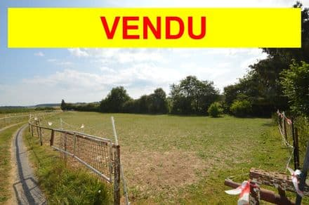 Land<span>12778</span>m² for rent Ouffet