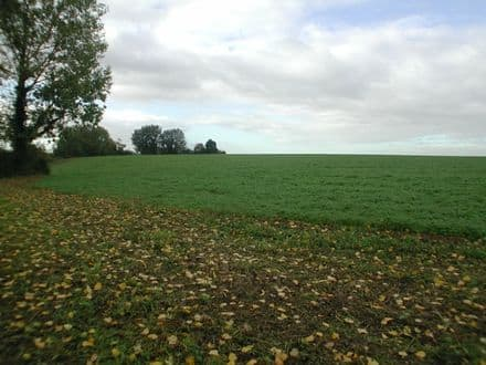 Building land<span>5390</span>m² for rent