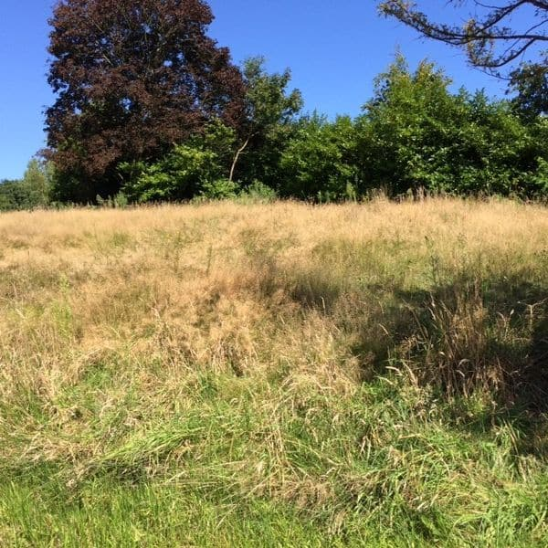 Land for sale in Ramsel