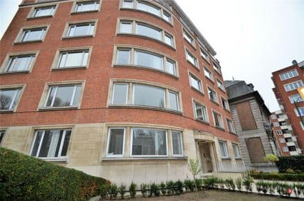 Special property<span>170</span>m² for rent
