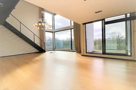 Duplex<span>239</span>m² for rent Brussels