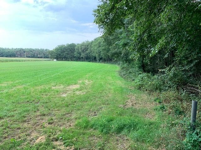Land for sale in Vorselaar
