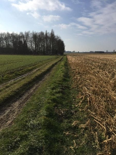 Land for sale in Humbeek