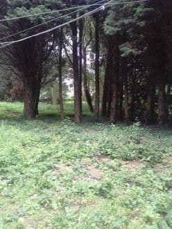 Building land<span>1530</span>m² for rent