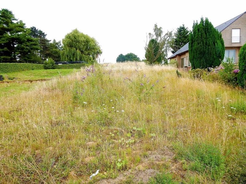 Land for sale in Asse