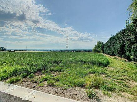 Land<span>2415</span>m² for rent Neupre
