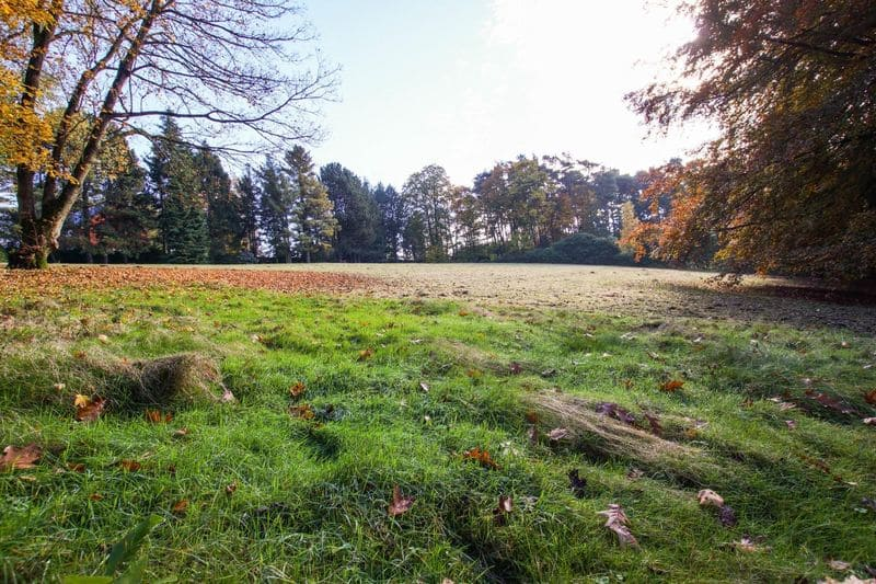 Land for sale in Bierges