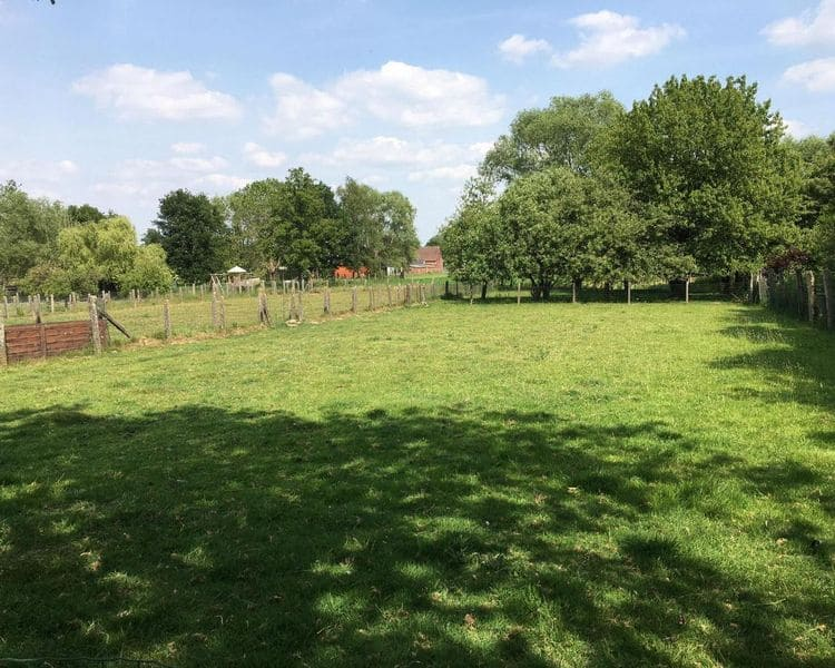 Land for sale in Viane