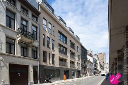 Business<span>39</span>m² for rent Antwerp