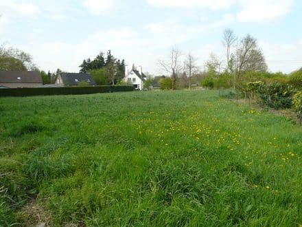 Building land<span>2100</span>m² for rent