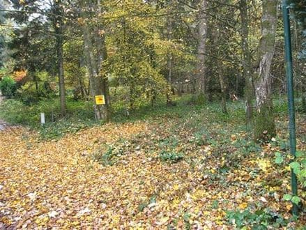 Land<span>3741</span>m² for rent Couvin