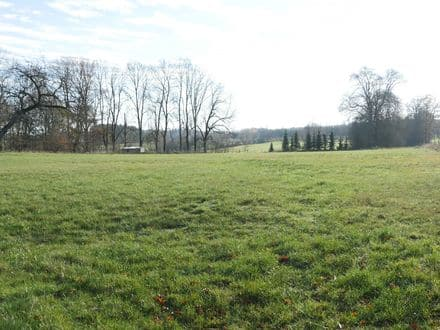 Land<span>7450</span>m² for rent Vielsalm