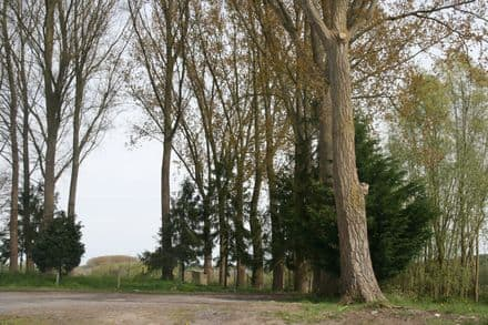 Land<span>1160</span>m² for rent Mons
