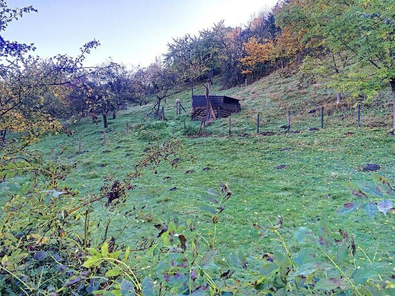 Land for sale in Wandre