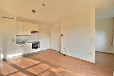 Apartment<span>33</span>m² for rent