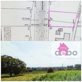 Land for rent Wortegem Petegem