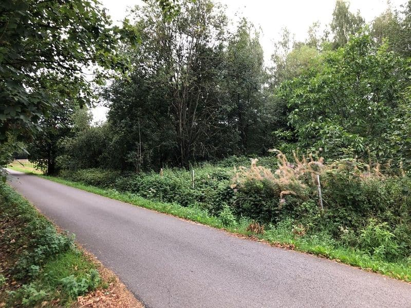 Land for sale in Herenthout