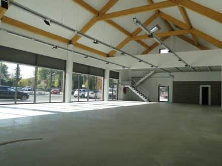 Business<span>380</span>m² for rent Hamme Mille