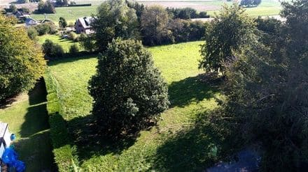 Land<span>2478</span>m² for rent Ohey