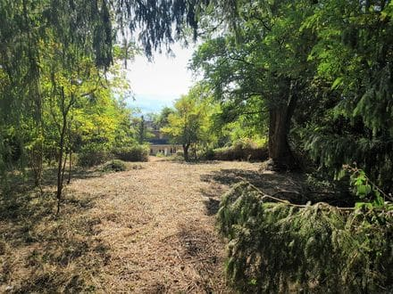 Land for rent Ferrieres