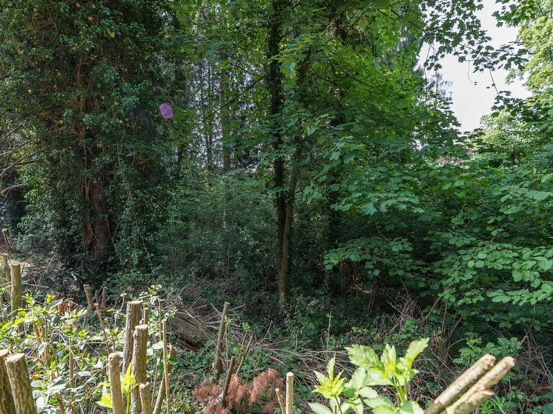 Land for sale in Ukkel