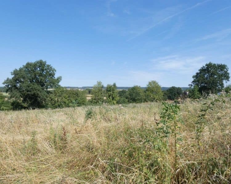 Land for sale in Durbuy