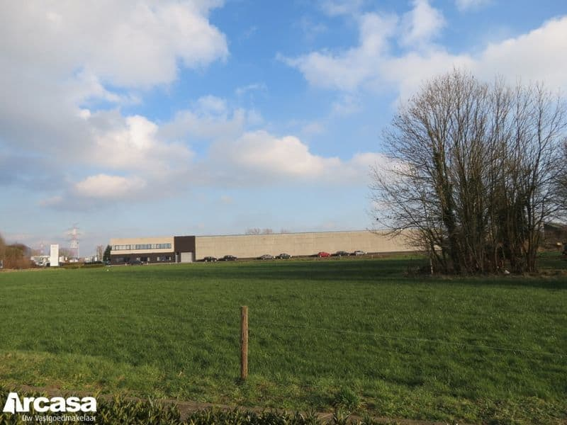 Land for sale in Schelle