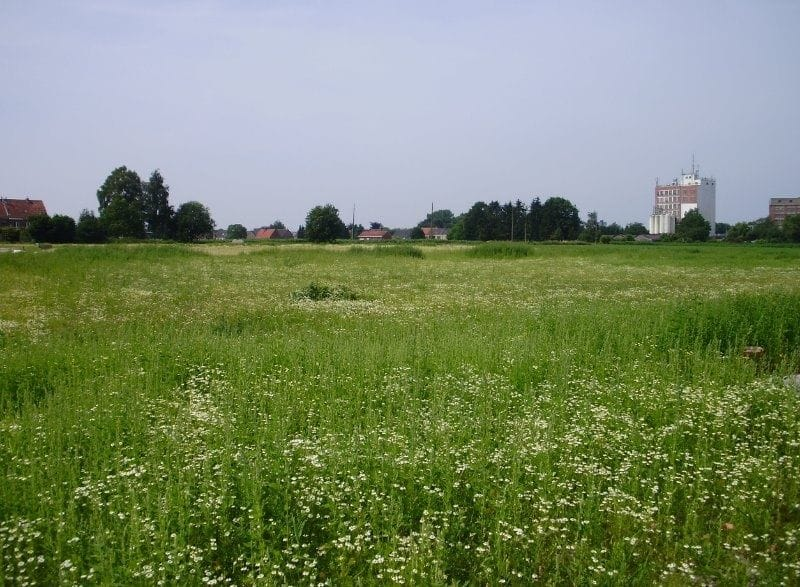 Land for sale in Turnhout
