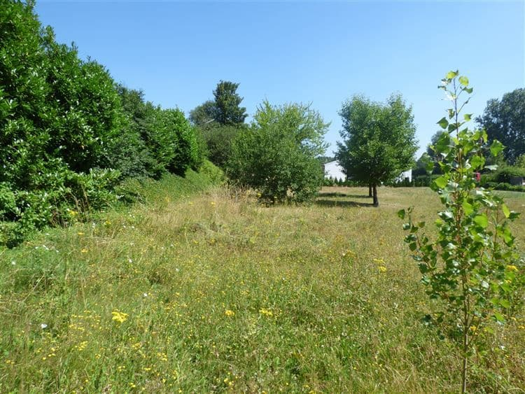 Land for sale in Braives