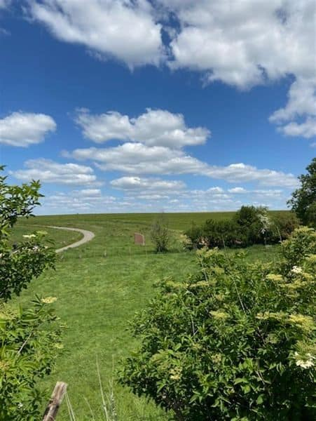 Land for sale in Thines
