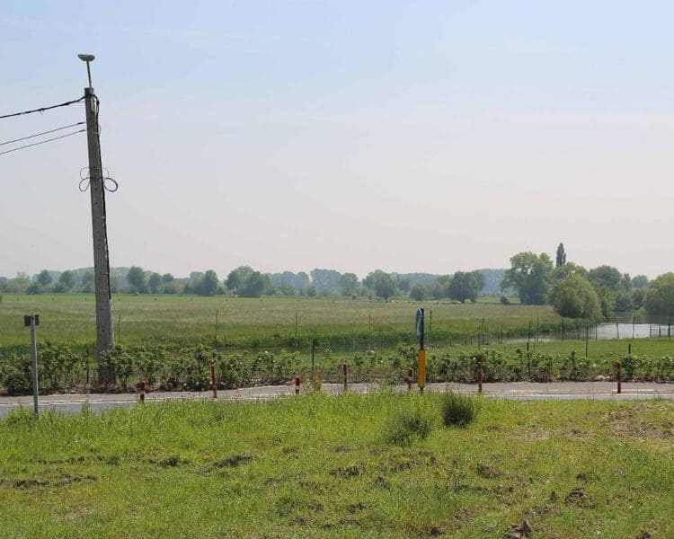Land for sale in Oeselgem
